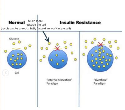 Teveel suiker zorgt voor insuline resistentie2